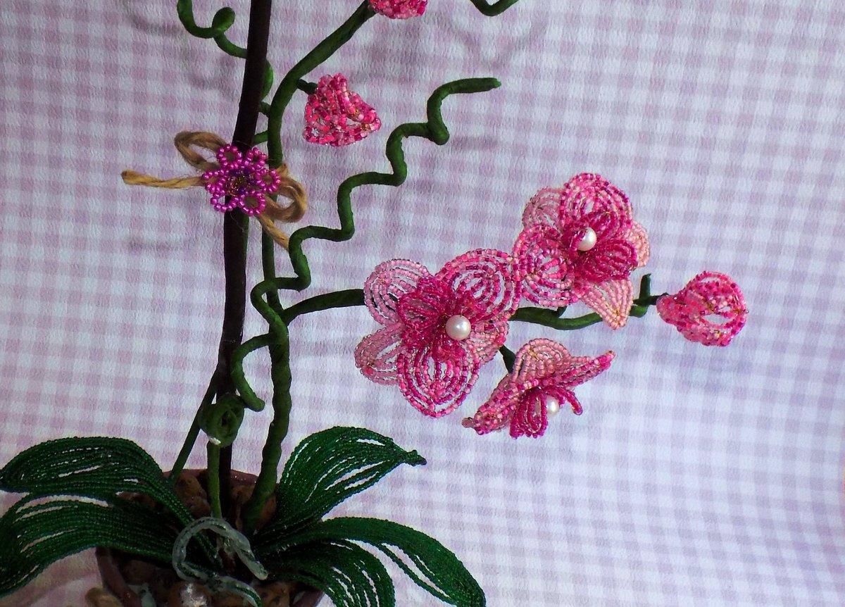Цветы из бисера мастер класс орхидеи, купить