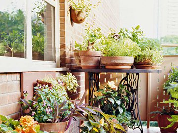 Идеи дизайна балконов и лоджий — в Яндекс.Коллекциях. Смотрите фотографии современных балконных интерьеров