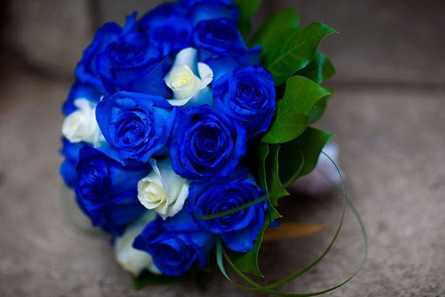 Теплоходе, букет невесты из синих роз купить киев