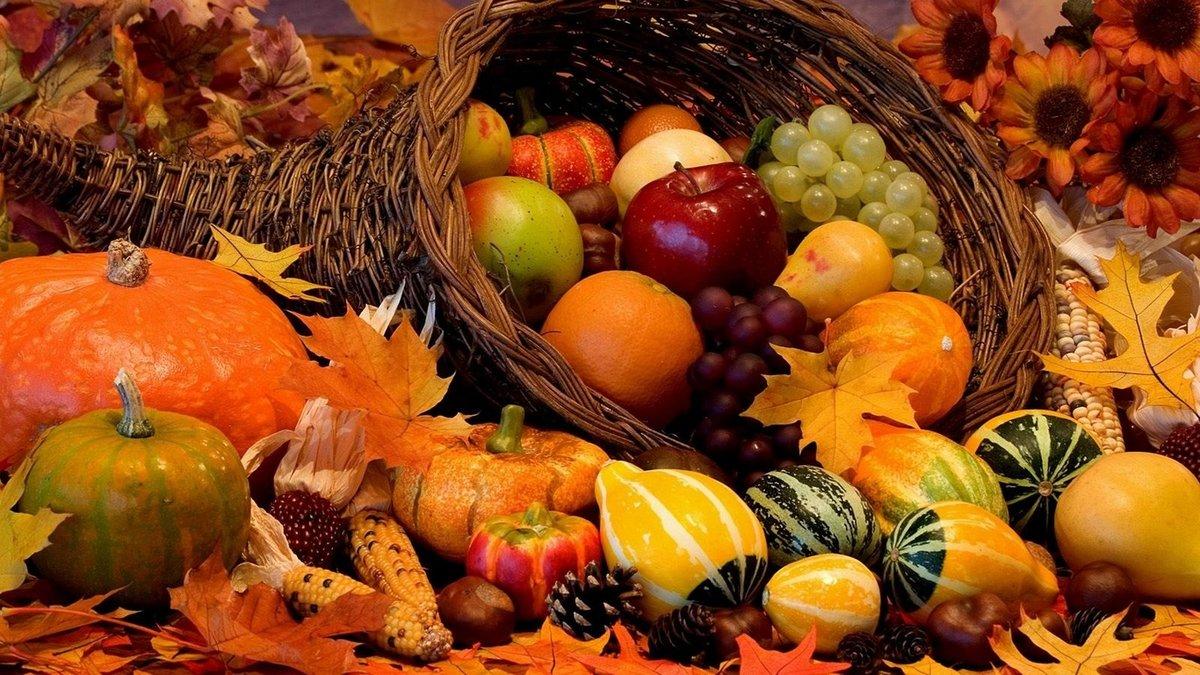 Открытки осень урожай, открытках