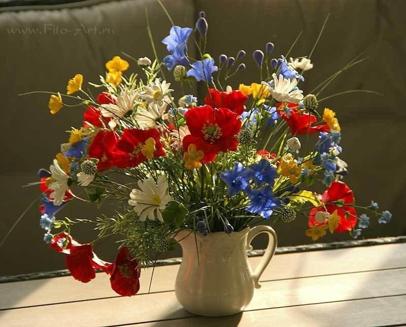Картинки с красивыми букетами полевых цветов
