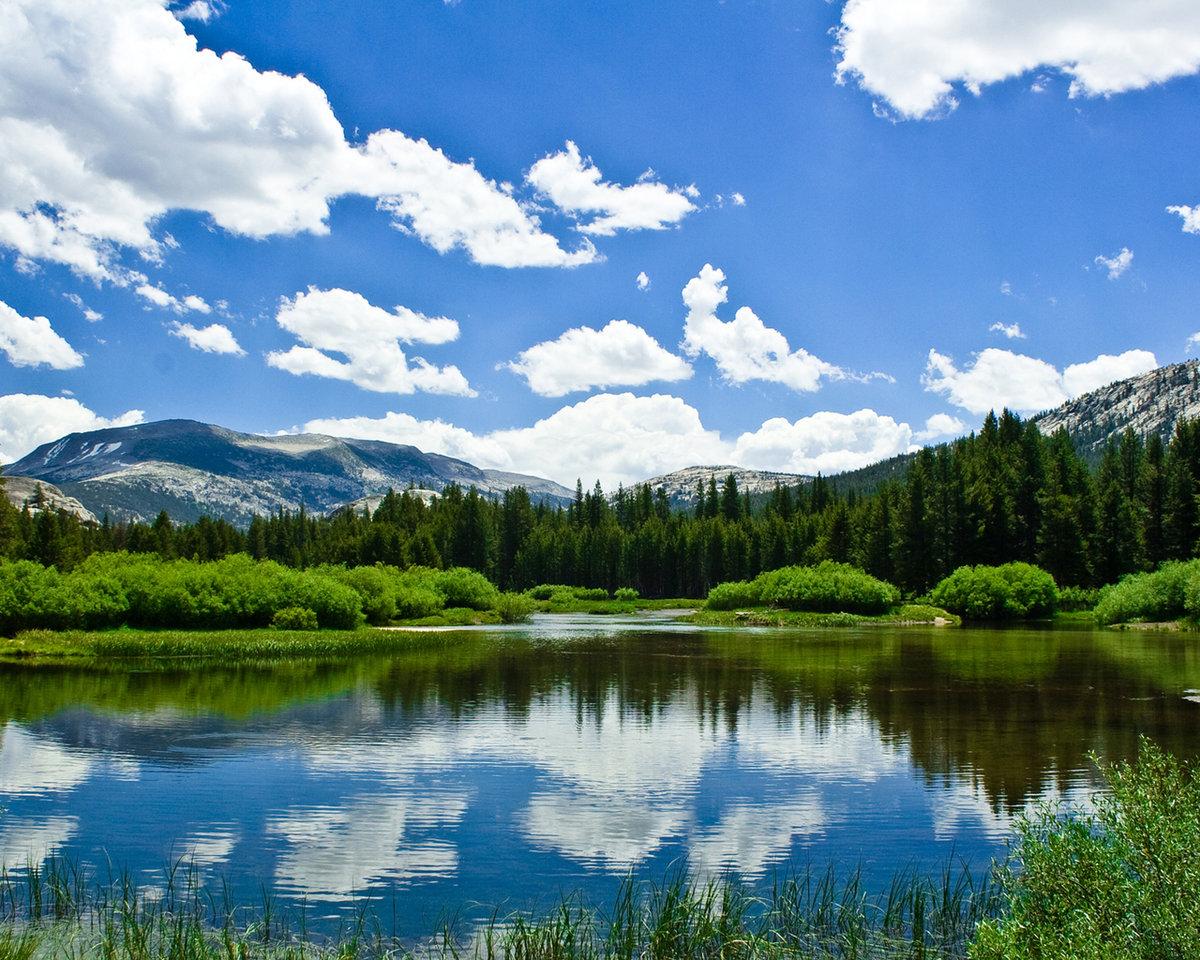 Открытка, картинки красивая природа лето