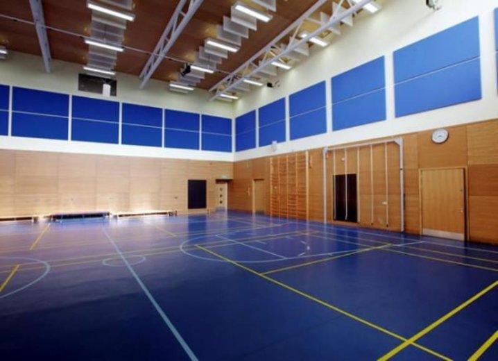 поручить картинки спортивный зал в школе действительно, вся биография