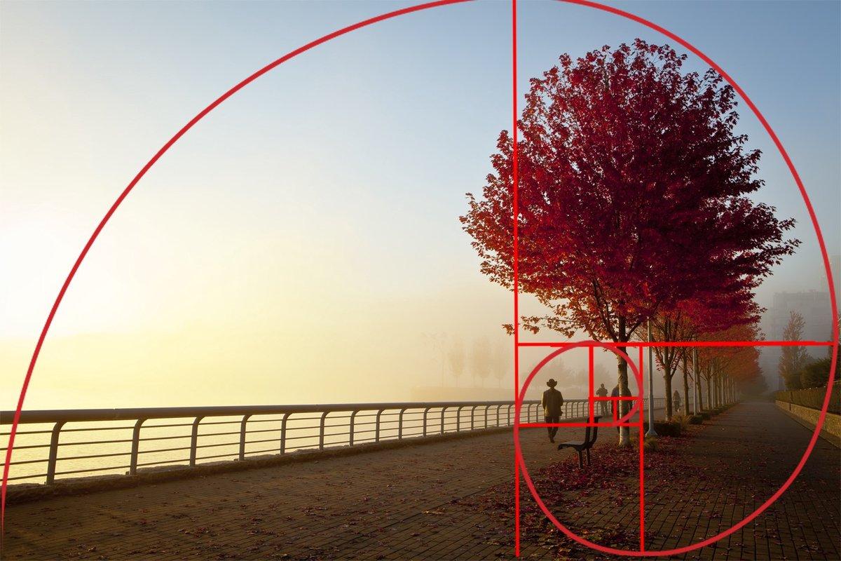 рукопашного боя правило золотого сечения в фотографии примеры комментариях