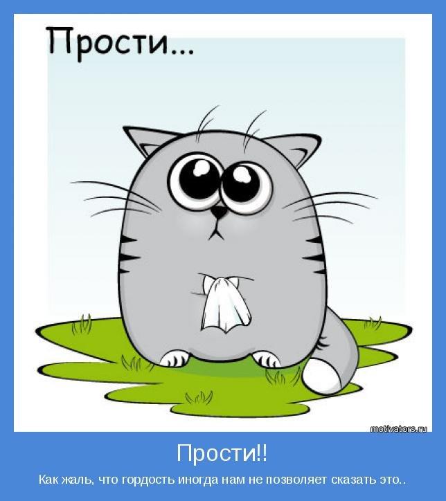Картинки музыкальная, прости меня котик открытка