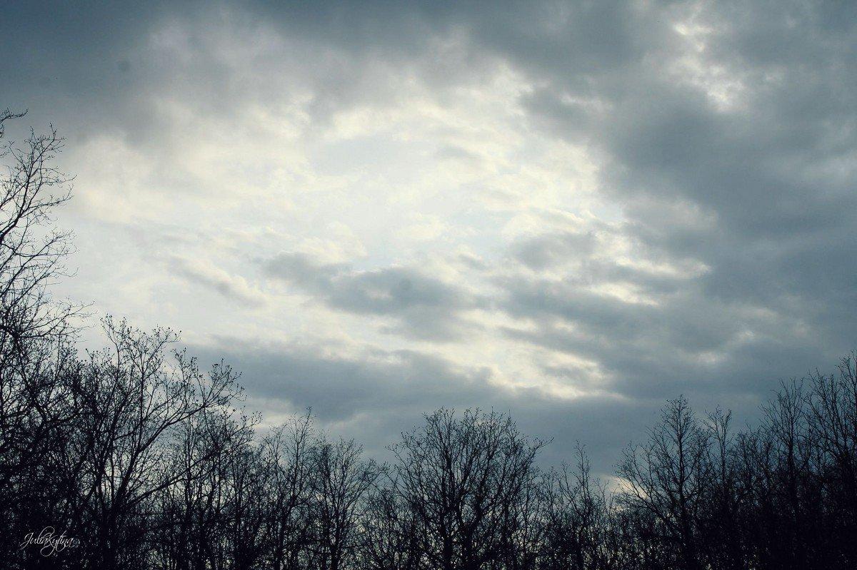 Пасмурная погода для фото