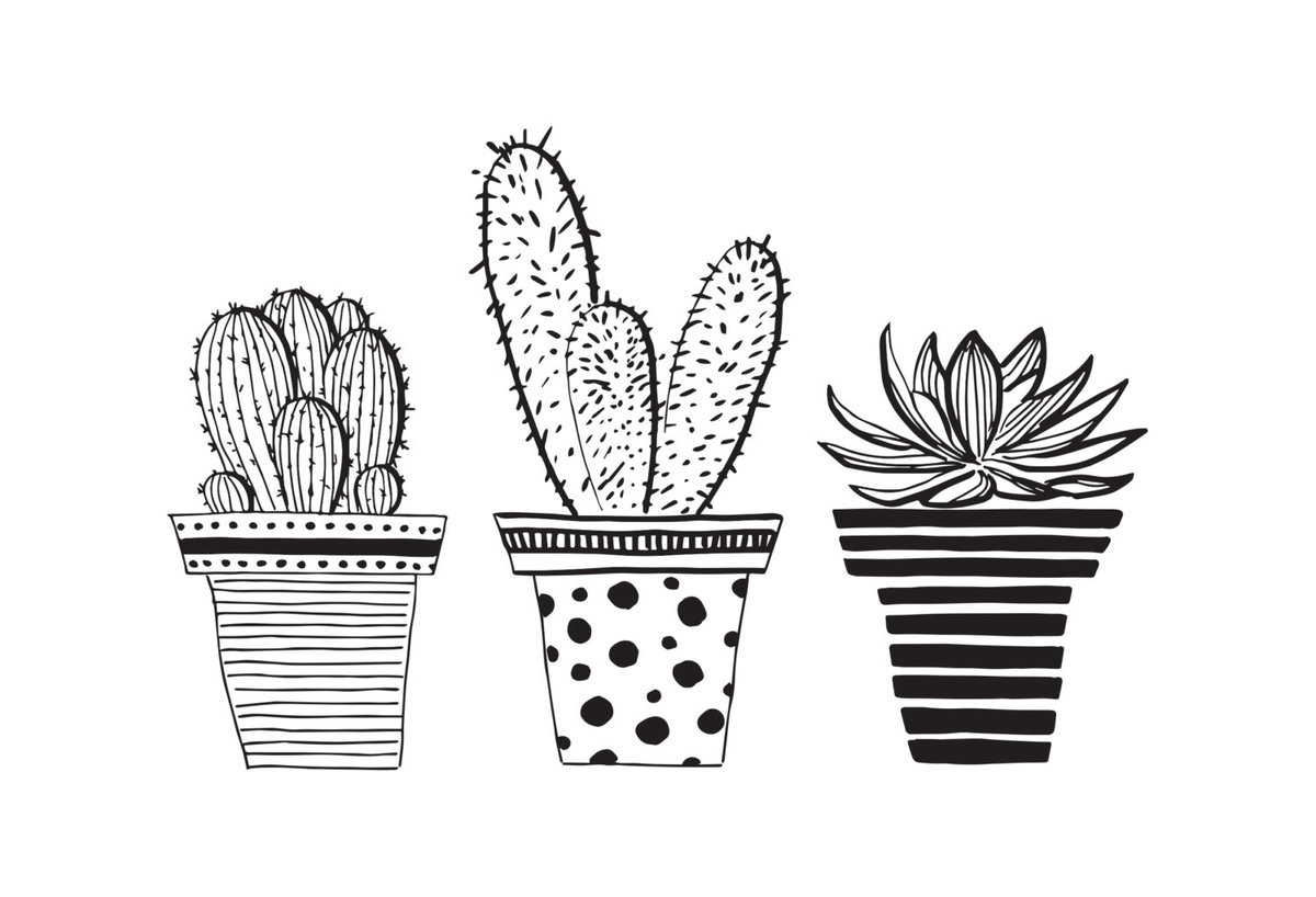 строительстве милые картинки кактусов черно белые животным, забота окружающих