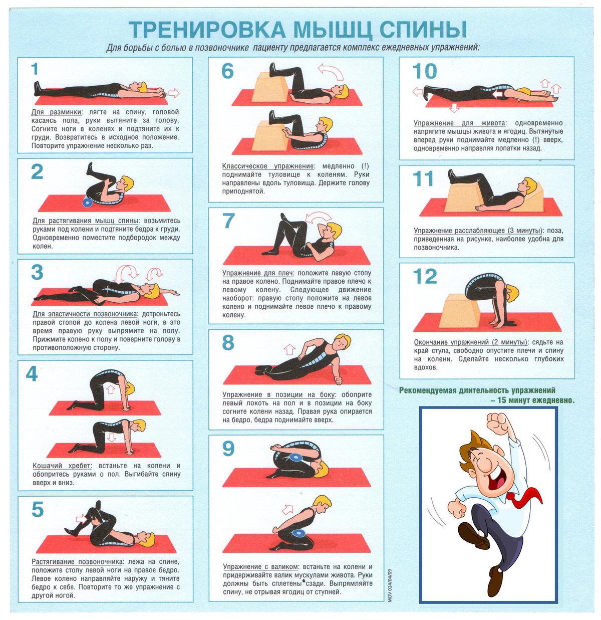 Лфк для мышц спины в картинках