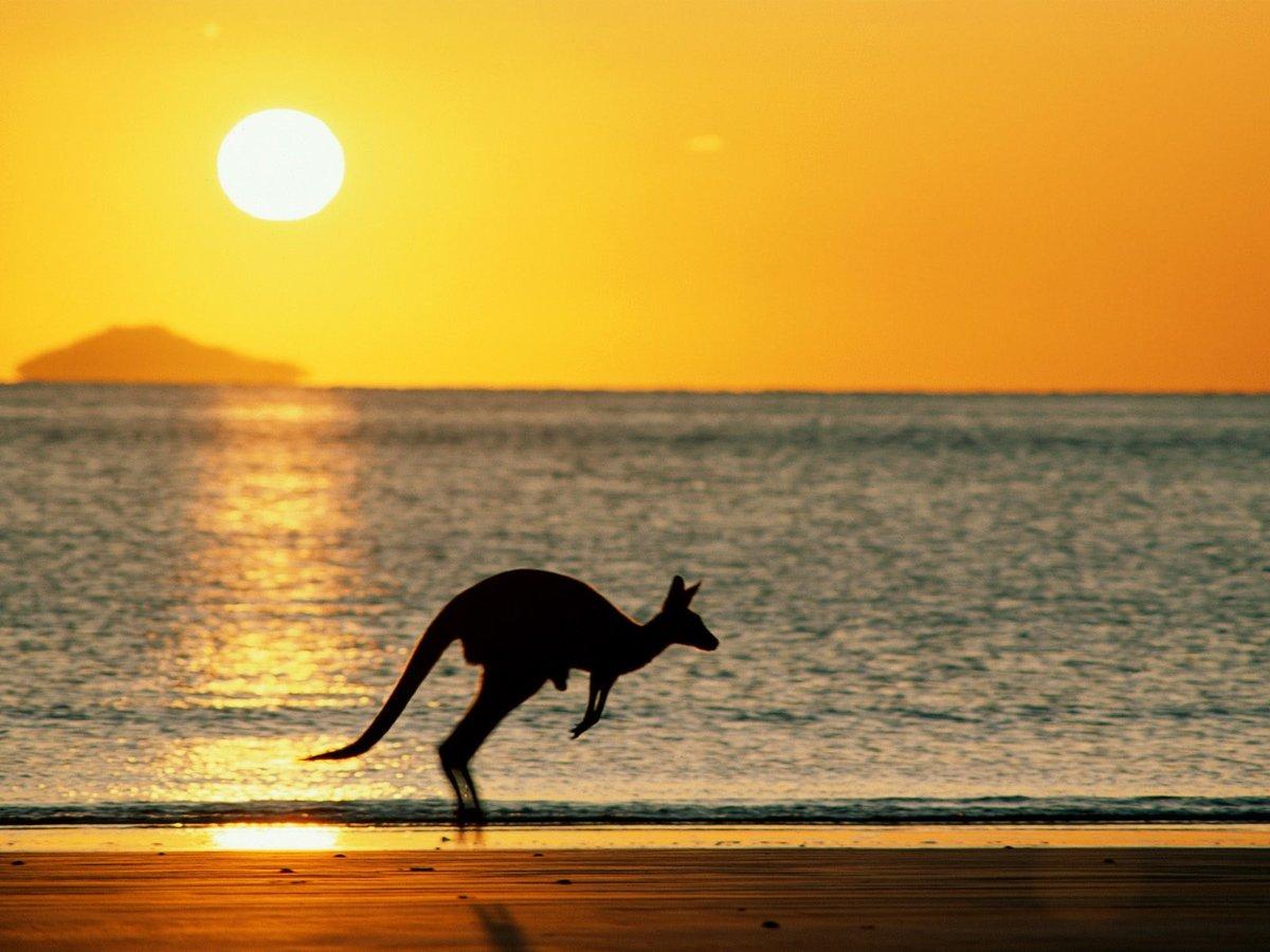 Австралия картинки для презентации, открытки поздравление февраля