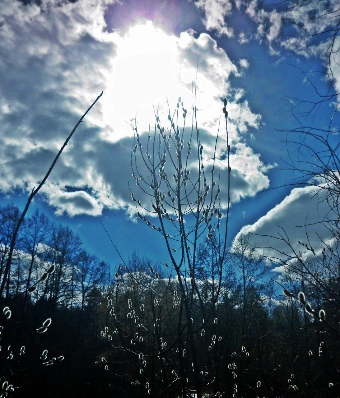 фото весеннего неба шулай