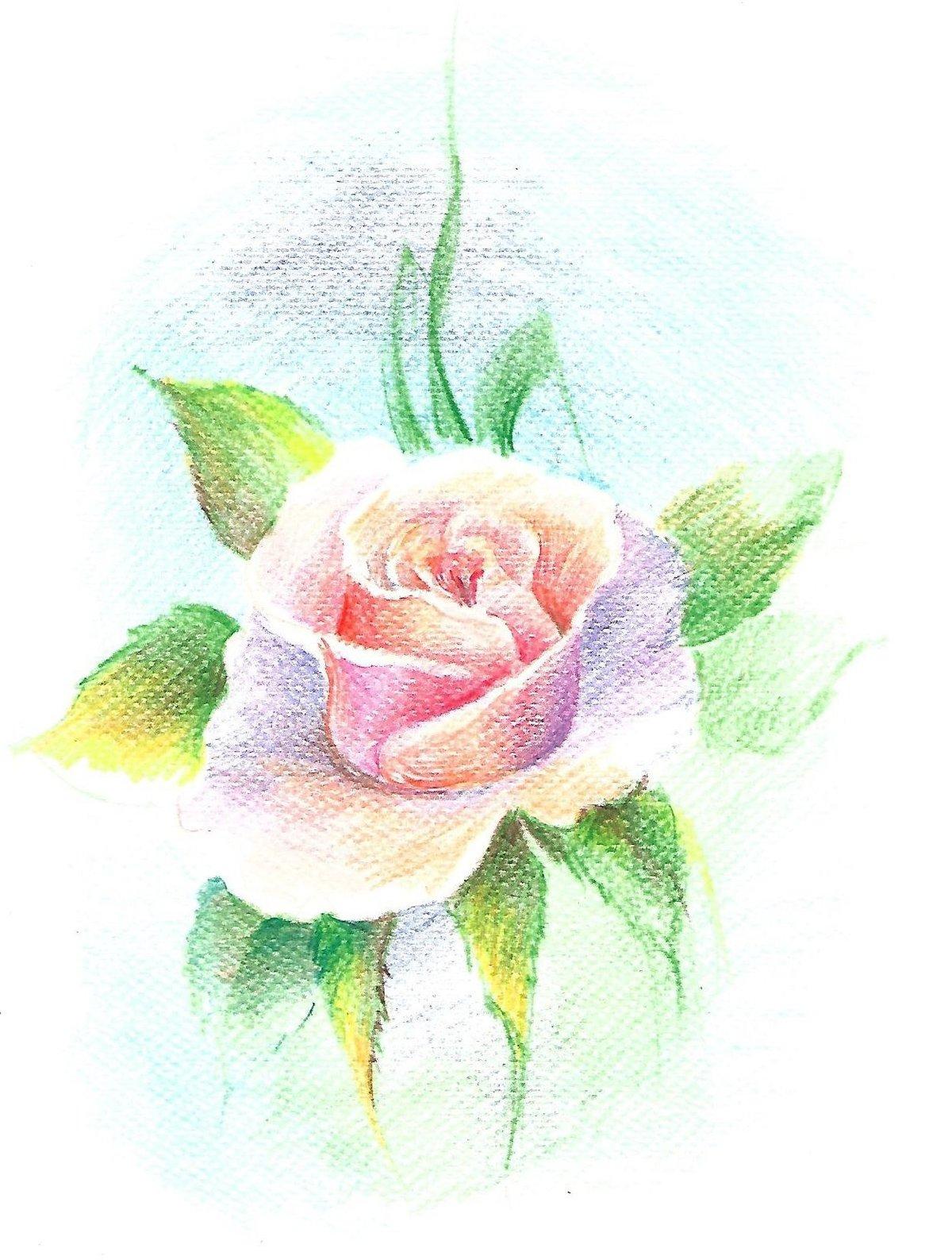 Самодельная бисером, розы для открытки нарисовать