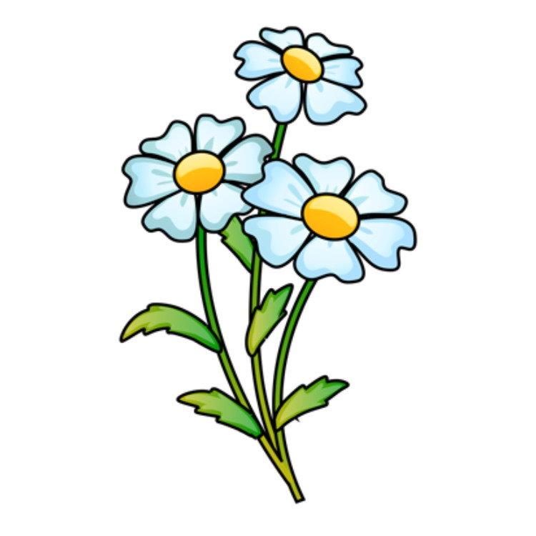 Картинка ромашки для малышей