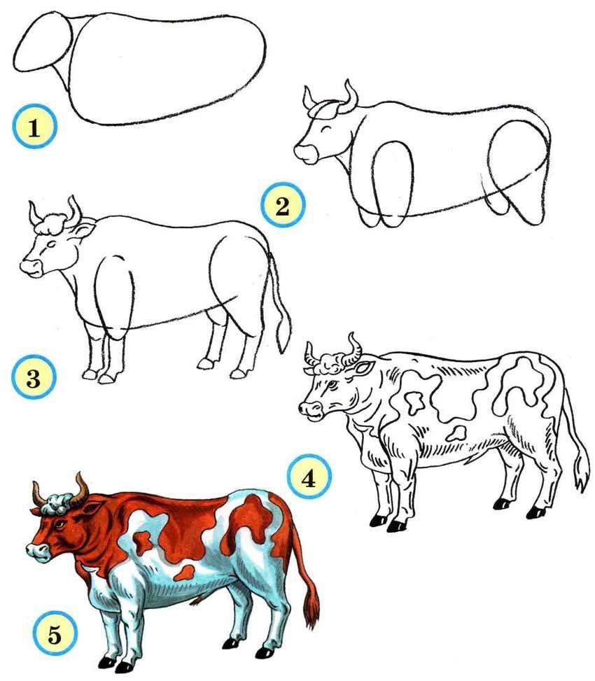 Картинки животного схемы рисования