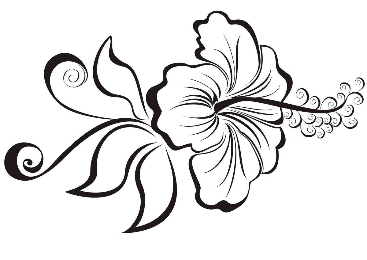 Днем ввс, картинки цветы на белом фоне нарисованные карандашом