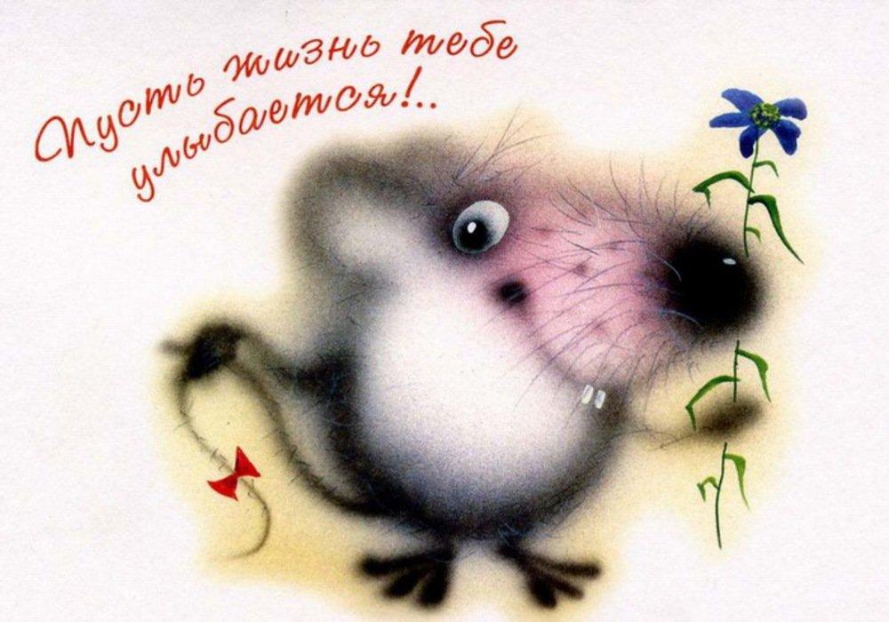 Открытка тебе в день рождения с крысами
