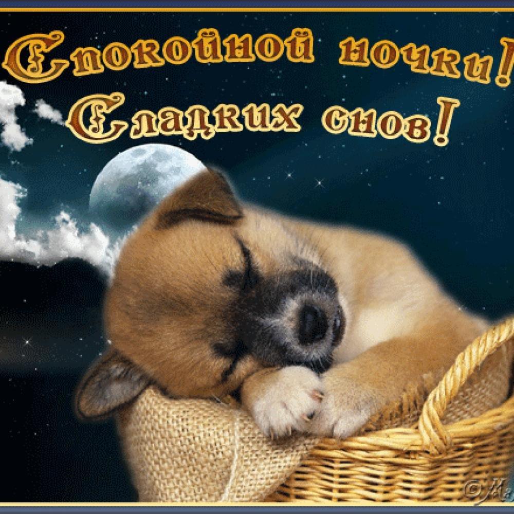 Картинки спокойного сна, конверт для новорожденного