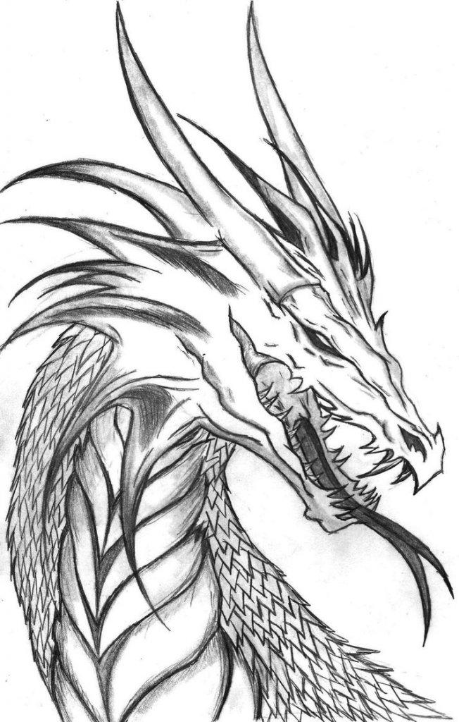 Крутые рисунки драконов простым карандашом