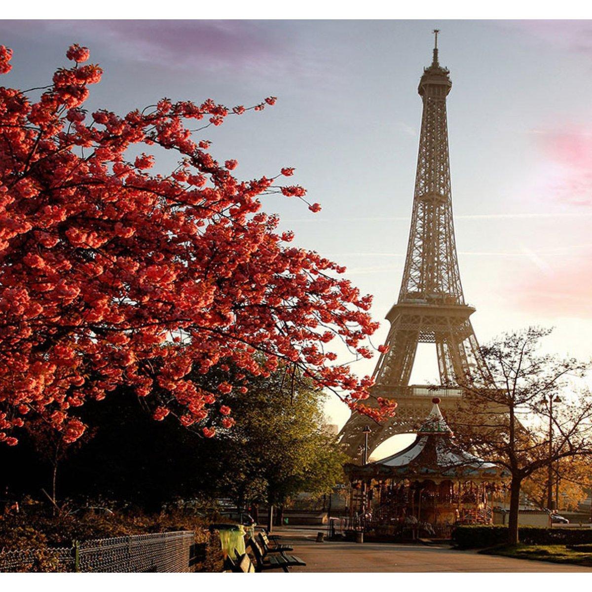 Красивые картинки природы парижа