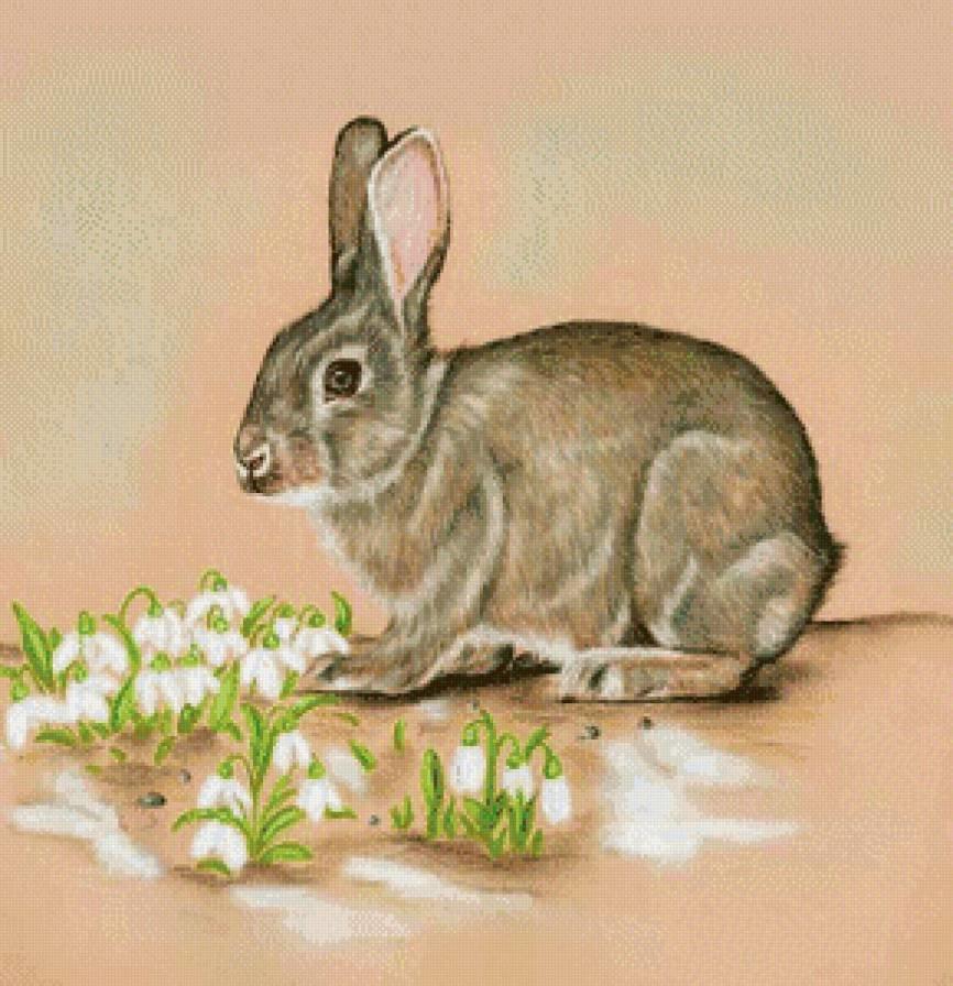 Картинка рисованный заяц