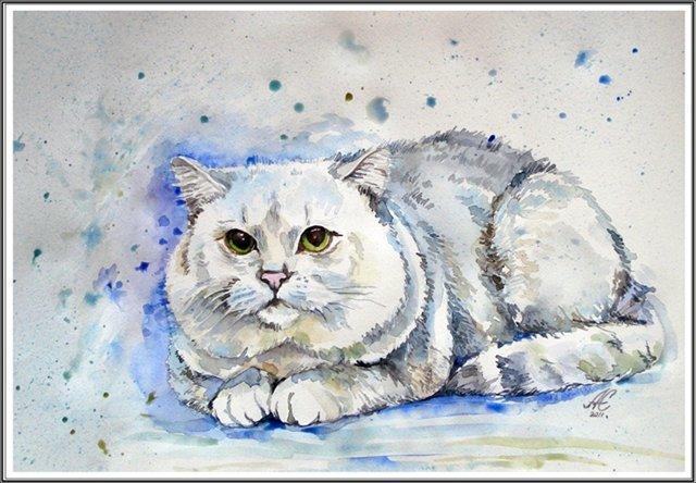 Рисунки кошки поэтапно гуашью констатируют, что