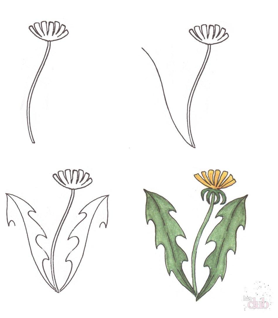 Рисунок о растениях детям