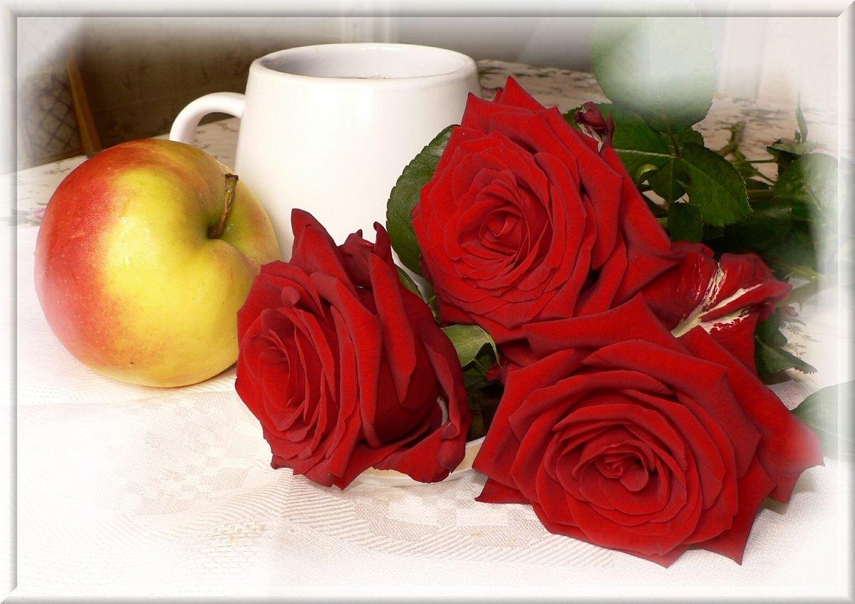 Картинка букет роз с надписью доброе утро