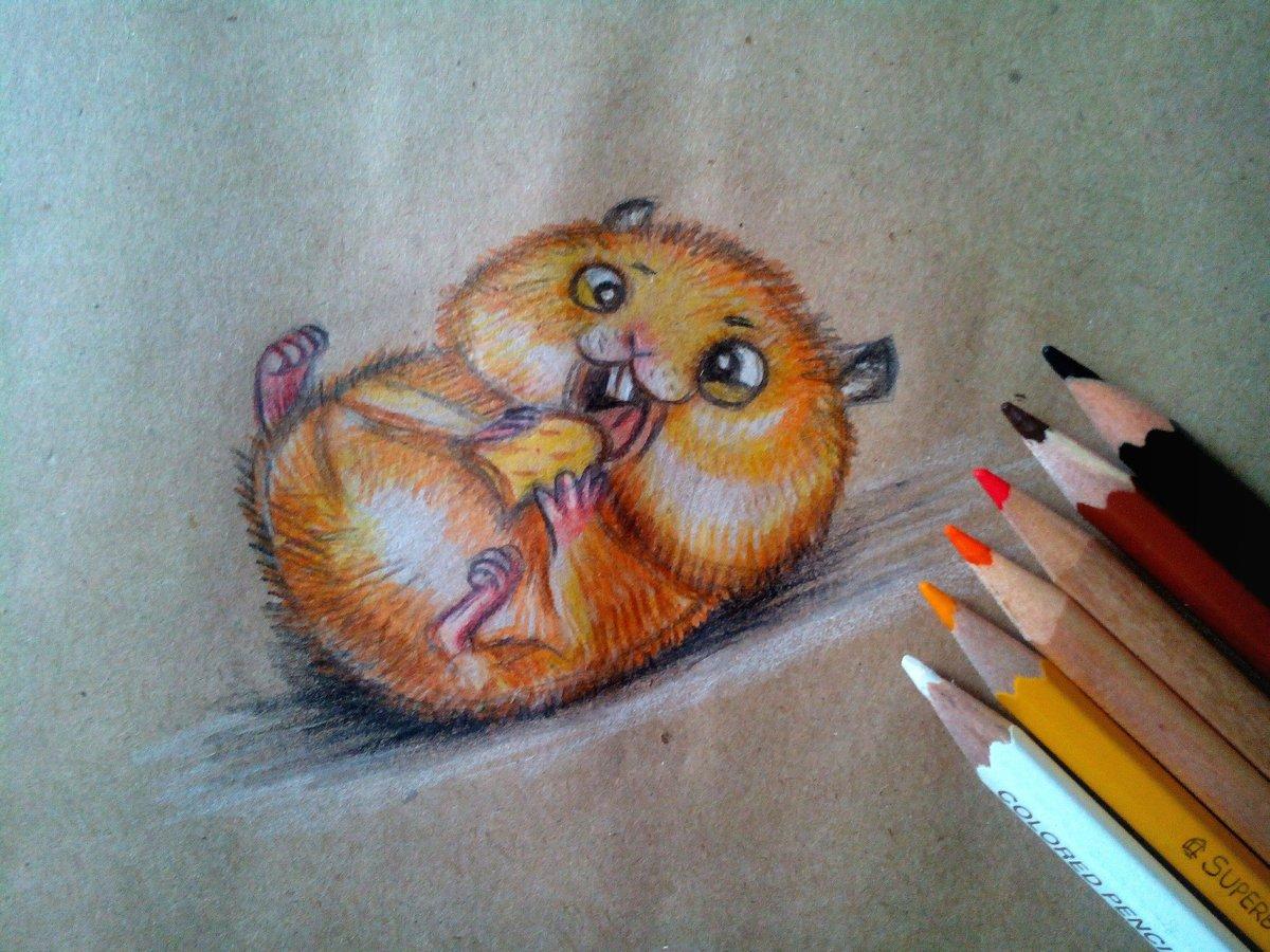 Прикольные картинки рисованные карандашами цветными