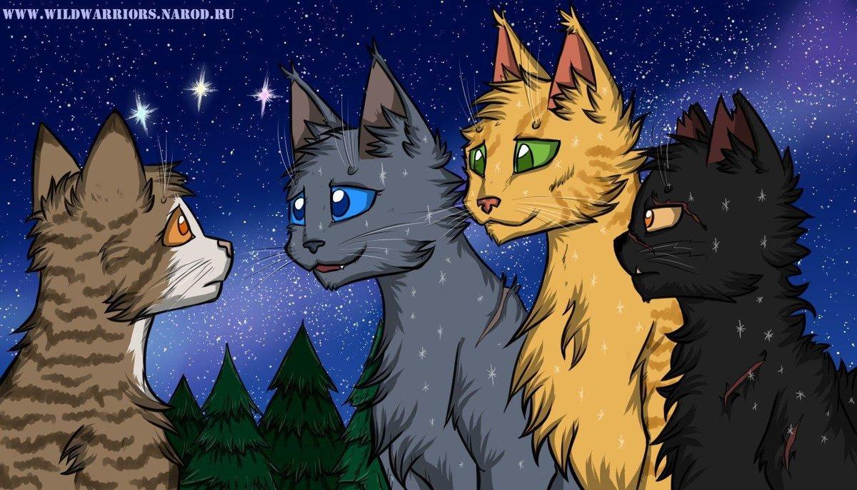 Сайты картинок коты воители