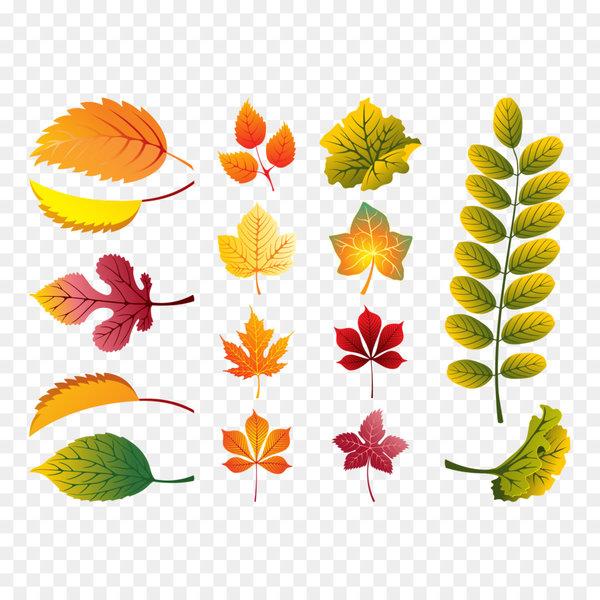 Листья картинки маленькие осенние