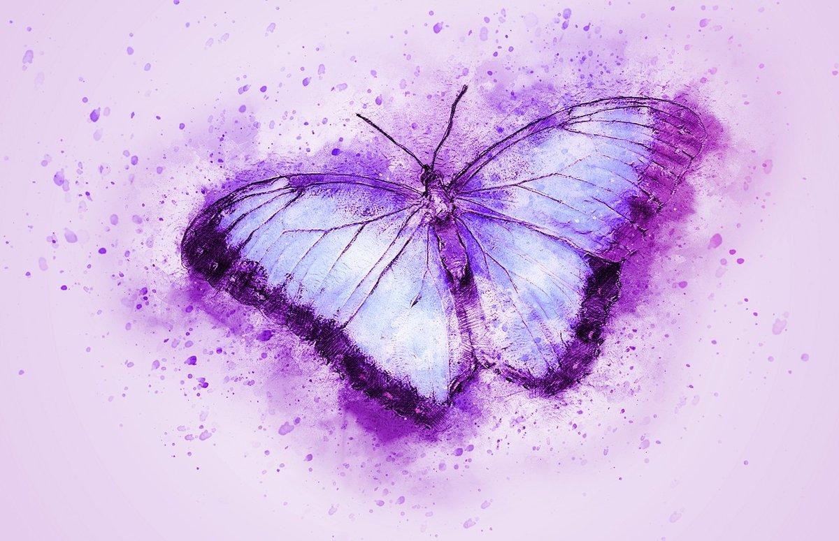 фокусировке картинки с фиолетовыми рисунками болгарии курорте