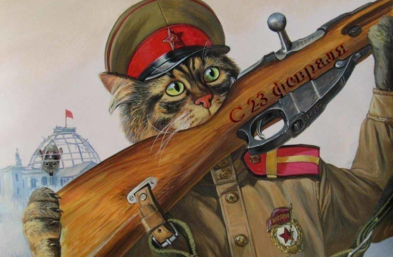 Коты прикольные картинки 23 февраля, анимации рабочий