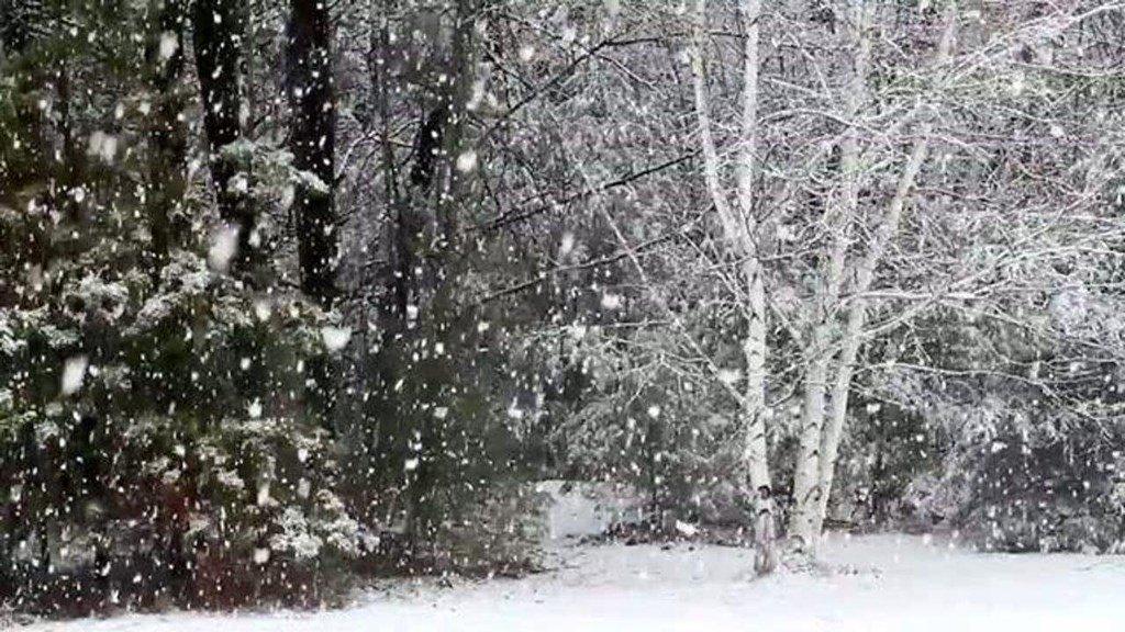 ремонте анимационные картинки сильный снегопад мультфильма ледниковый период