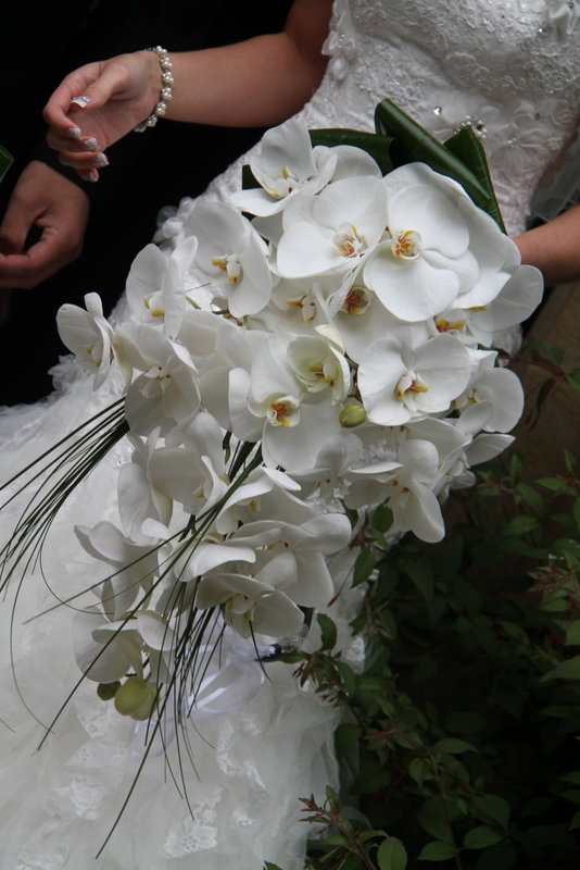 Орхидея фаленопсис в букете, коробка цветами