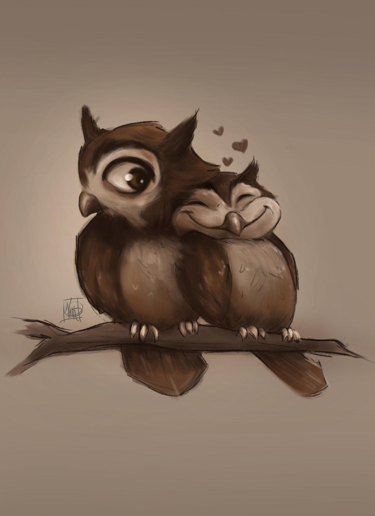 Картинки милые совы пары