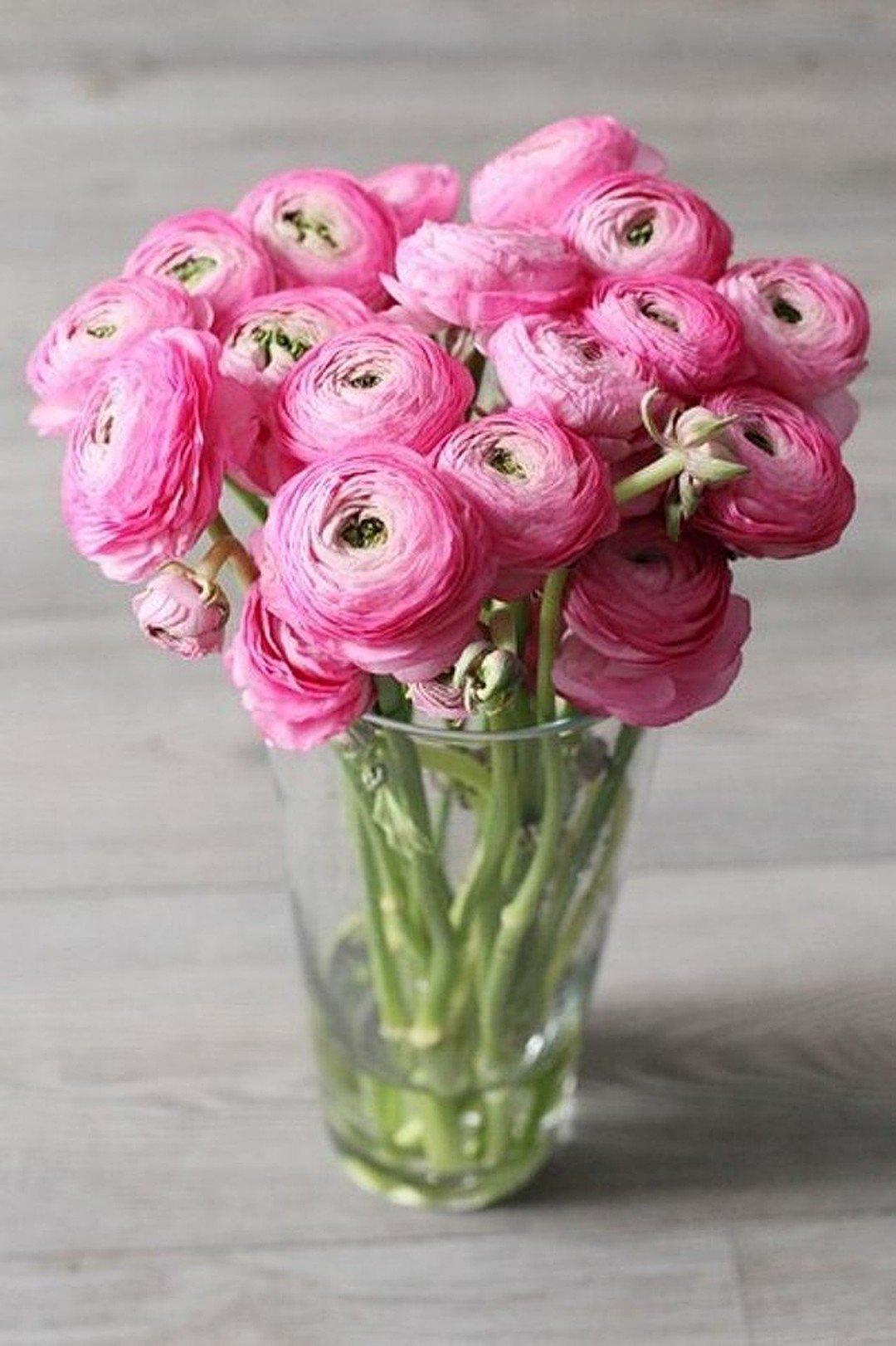 картинки цветы ранункулюсы художественные натяжные