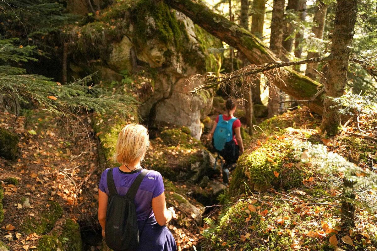 Тур «Осенними горными тропами» – увидеть всё самому! | Формула активного отдыха