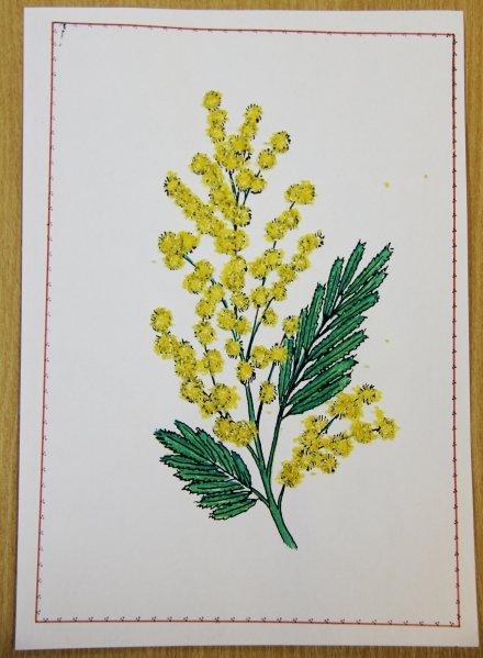 Мимоза открытки своими руками для малышей, картинки надписями