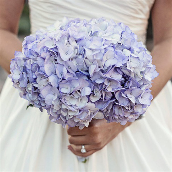 Прайс, свадебные букеты из гортензии фото