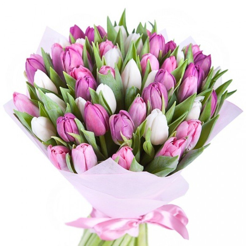 Открытка букет тюльпанов для женщины
