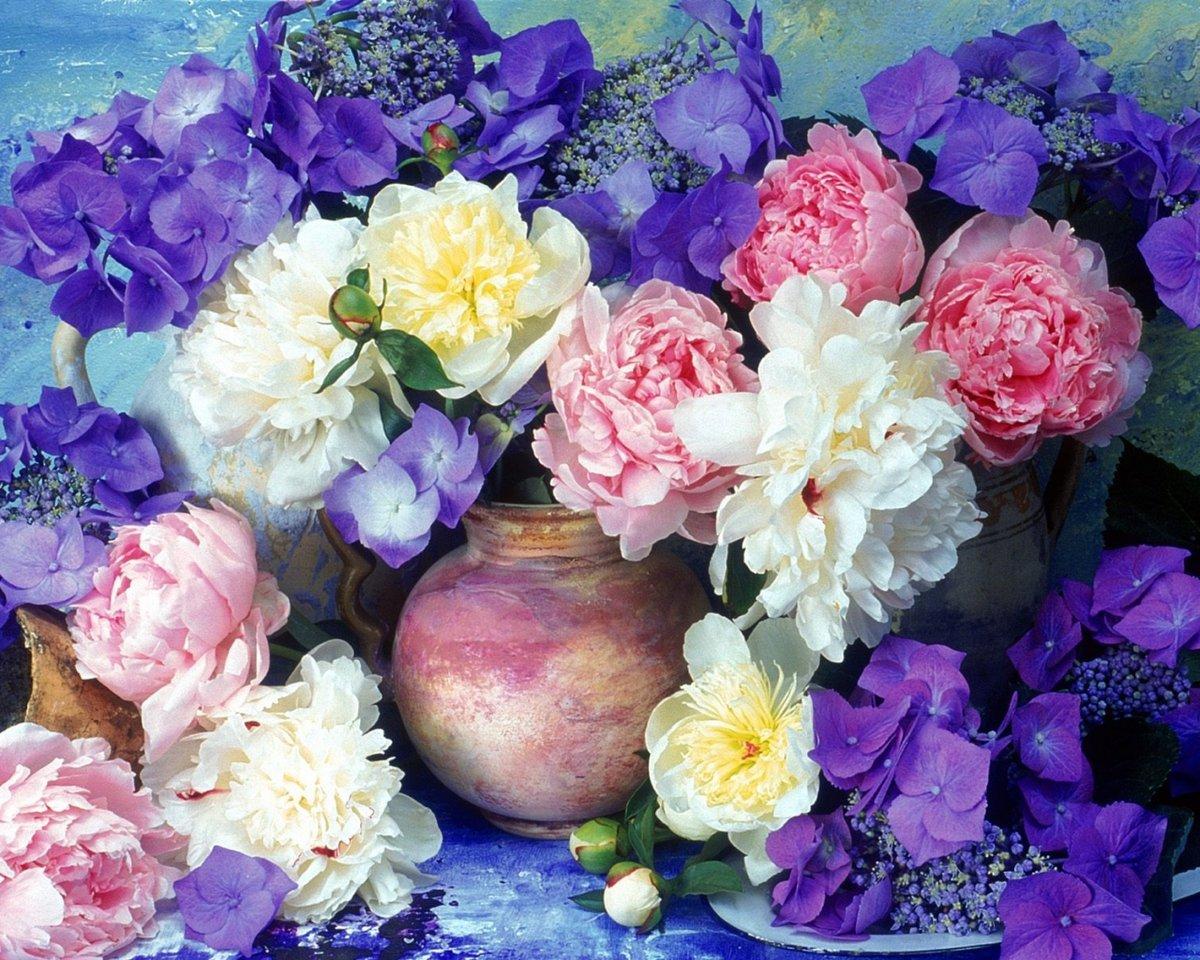 Красивые открытки с цветами на рабочий стол, теплее