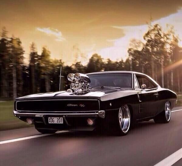 1000 Ideas About American Muscle Cars On Pinterest Muscle Cars