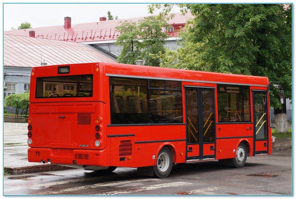 межкомнатных дверей низкопольные автобусы паз фото стелющиеся побеги свисают