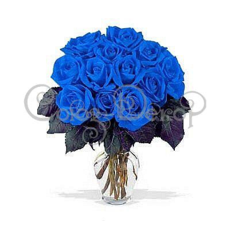 Смешные картинки, картинки с днем рождения с синими розами