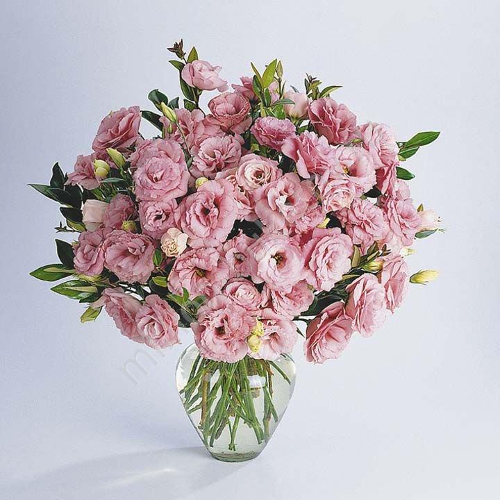 Цветы для букета названия по алфавиту, букет, цветы