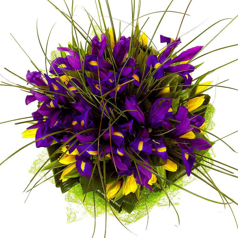 Букет из фиолетовых и желтых цветов, заказ