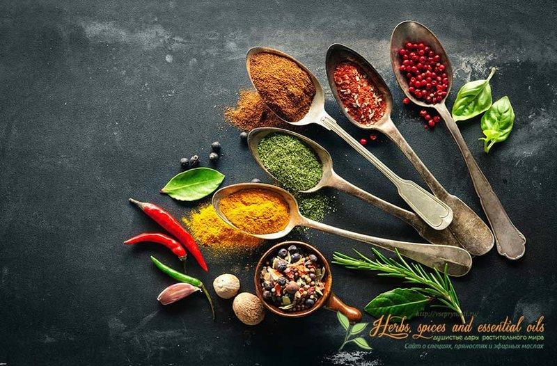 Интересная статья обзор, которая расскажет вам про индийские пряности, их состав, свойства, способы применения, откроет рецепты вкусных блюд Индийской кухни