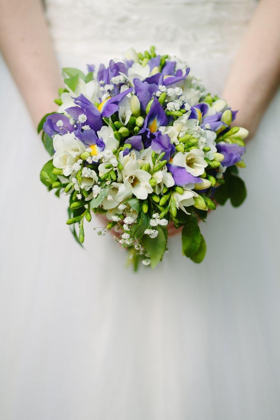 Цветов днепропетровске, букет из синей фрезия свадебный