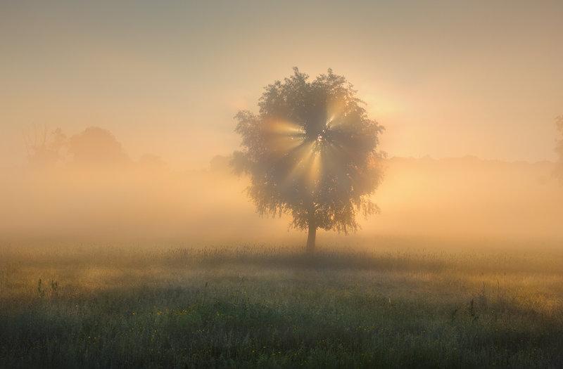 Контровой свет в пейзажной фотографии