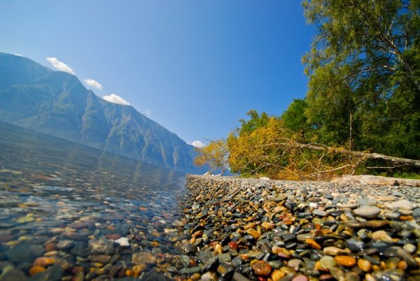 Красивейшее из горных озер России - Телецкое