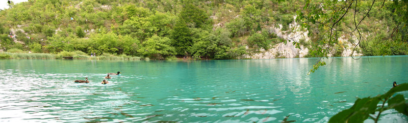 Панорамная фотография озера
